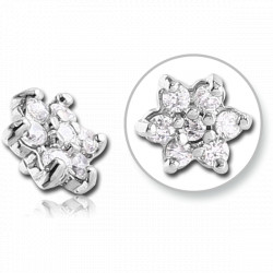 Titanium Claw Set Gem Flower Microdermal Top