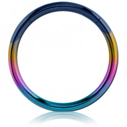 Rainbow Anodized Surgical Steel Hinged Segment Ring