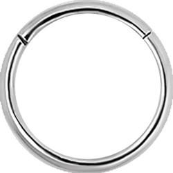 18g Hinged Segment Ring
