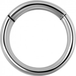 Large Diameter Hinged Segment Ring - 16g & 14g