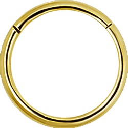Gold Plated Surgical Steel Hinged Segment Ring - 18g