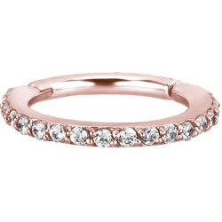Rose Gold Plated Surgical Steel Claw Set Side Jeweled Hinged Segment Ring