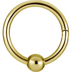 Gold Plated Surgical Steel Hinged Segment CBR - 16g