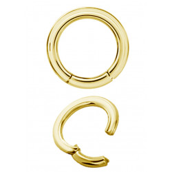 Gold Plated Surgical Steel Hinged Segment Ring