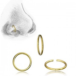 Brass Continuous Nose Hoop